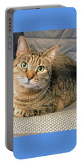 Missy Portable Battery Charger