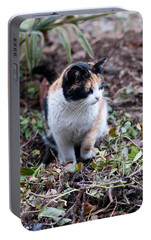 Portable Battery Charger featuring the photograph Mochi In The Garden by Laura Melis