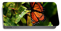 Viceroy Butterfly II Portable Battery Charger