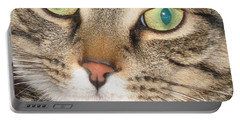 Portable Battery Charger featuring the photograph Monty The Cat by Jolanta Anna Karolska