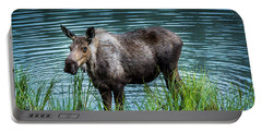 Moose Portable Battery Charger by Andrew Matwijec