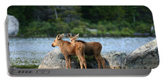 Moose Calves In Maine Portable Battery Charger by Jeannette Hunt