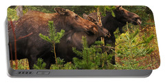 Portable Battery Charger featuring the photograph Moose Family At The Shredded Pine by Stanza Widen