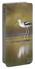 Portable Battery Charger featuring the photograph Morning Avocet by Bryan Keil