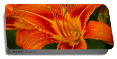 Portable Battery Charger featuring the photograph Morning Dew by Dave Files