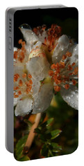 Morning Dew Portable Battery Charger by Pamela Walton