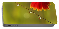 Portable Battery Charger featuring the photograph Morning Dew by Patrick Shupert
