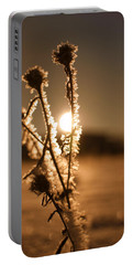 Portable Battery Charger featuring the photograph Morning Walk by Miguel Winterpacht