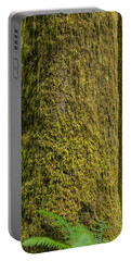 Moss Covered Tree Olympic National Park Portable Battery Charger