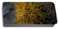 Moss On Tree Portable Battery Charger by Pamela Walton