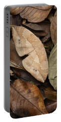 Moth Camouflaged Against Leaf Litter Portable Battery Charger