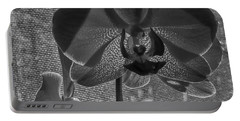 Portable Battery Charger featuring the photograph Moth Orchid In Window by Ron White