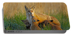 Mother Fox And Kits Portable Battery Charger