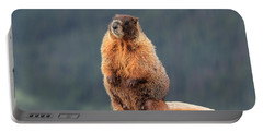 Mother Marmot Portable Battery Charger