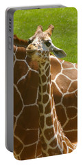 Mother's Child Portable Battery Charger