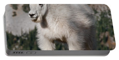 Mountain Goat Kid Standing On A Boulder Portable Battery Charger