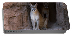 Portable Battery Charger featuring the photograph Mountain Lion 1 by Arterra Picture Library