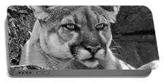 Mountain Lion Bergen County Zoo Portable Battery Charger