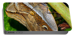 Portable Battery Charger featuring the photograph Mournful Owl Butterfly by Amy McDaniel
