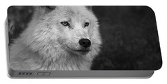 Mr. Arctic Wolf.. Portable Battery Charger
