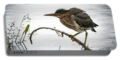 Mr. Green Heron Portable Battery Charger by Cheryl Baxter