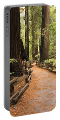 Muir Woods Trail Portable Battery Charger