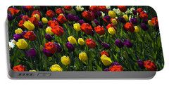 Multicolored Tulips At Tulip Festival. Portable Battery Charger by Yulia Kazansky