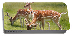 Multitasking Deer In Richmond Park Portable Battery Charger