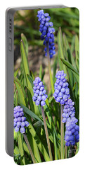 Muscari Armeniacum Portable Battery Charger by Felicia Tica