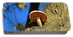 Portable Battery Charger featuring the photograph Mushroom In A Tree by Ally  White