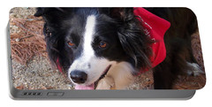 Female Border Collie Portable Battery Charger by Eunice Miller