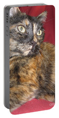 My Portrait For You Portable Battery Charger
