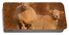 Portable Battery Charger featuring the photograph My Sheep ...   by Lydia Holly
