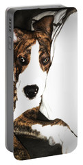 Portable Battery Charger featuring the photograph Nap Time by Robert McCubbin