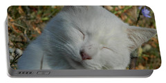 Portable Battery Charger featuring the photograph Napping Barn Cat by Kathy Barney