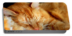 Naptime Portable Battery Charger