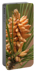 Nascent Pinecone Portable Battery Charger