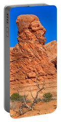 Portable Battery Charger featuring the photograph Natural Sculpture by John M Bailey
