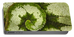 Natures Spiral Portable Battery Charger