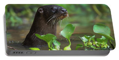 Neotropical Otter Lontra Longicaudis Portable Battery Charger