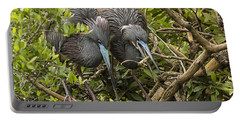 Nest Building Portable Battery Charger by Priscilla Burgers