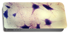Neurons In A Human Brain Portable Battery Charger