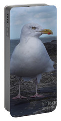 New Quay Gull  Portable Battery Charger by John Williams