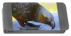 New Zealand Kaka Happy Hour Portable Battery Charger by Venetia Featherstone-Witty