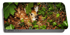 Newborn Fawn  Portable Battery Charger by Eleanor Abramson