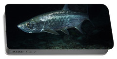 Night Tarpon Portable Battery Charger by Carey Chen
