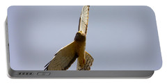 Northern Harrier Banking Portable Battery Charger by Mike  Dawson