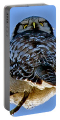 Northern Hawk Owl Looks Around Portable Battery Charger by Torbjorn Swenelius