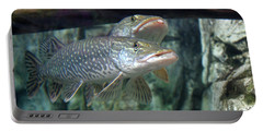 Northern Pike Portable Battery Charger