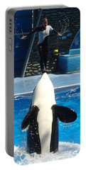 Portable Battery Charger featuring the photograph Nose Dive by David Nicholls